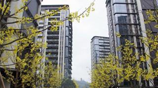 11月70城房价出炉 !房地产市场总体稳定