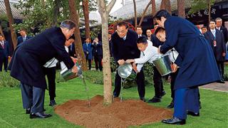 中日韩领导人共植桂花树 象征友谊永固