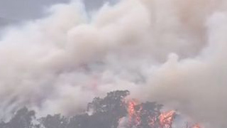 澳大利亚山林大火已燃烧数月 过火面积超1000万公顷