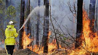 ?澳洲山火烟雾或入侵南极