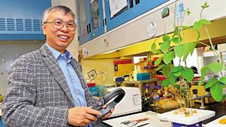 香港中大推大豆STEAM计划 为港培养农科人才