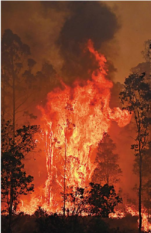 澳洲山火逢降雨 恐引洪灾山崩