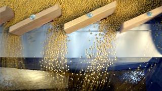 美国农业部取消2020年农业补贴