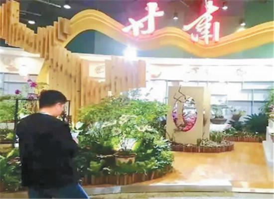 甘肃:牡丹花开脱贫路