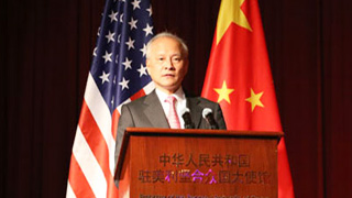 崔天凯:中美关系正处在一个关键节点