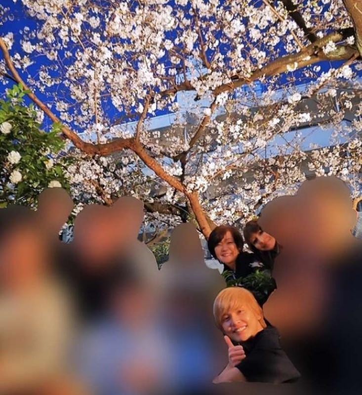 ?东京籲民众避免外出 安倍夫人仍组团赏樱