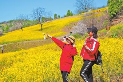 旅游企业可正常开展湖南省内旅游业务