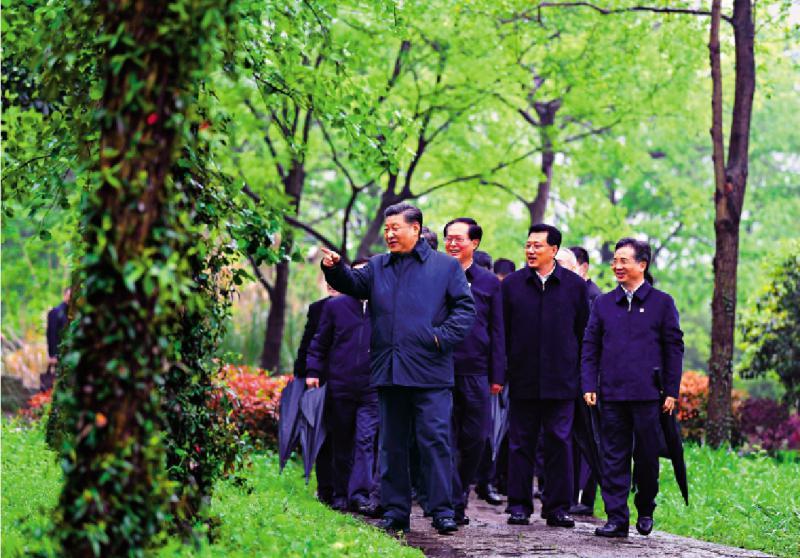 ?习近平:绿色发展道路坚持走下去
