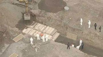 纽约一天死亡437例 囚犯被征用在无人岛挖坑埋尸