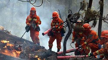 近期森林火灾多发频发 四川省、凉山州政府被约谈
