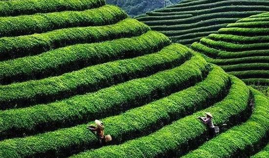 湖南(春季)乡村文化旅游节4月28日在安化启幕
