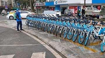 """共享单车大数据看城市""""焕活力"""" 北上深最早醒"""