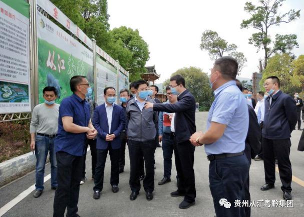 国家海关总署特许生猪供港澳 贵州粤黔30万头生猪供港计划重启