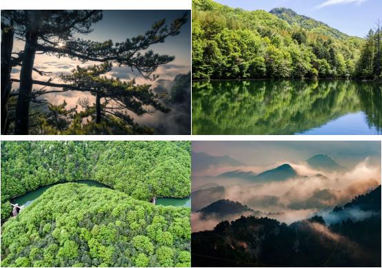 嵩县五一小长假旅游业有序复工复产