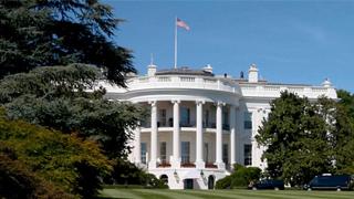 美副总统支付宝老白号新闻秘书新冠病毒检测呈阳性