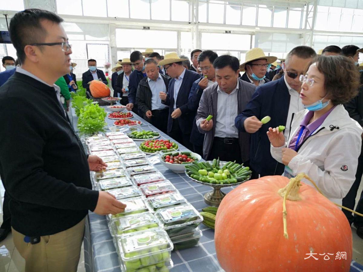 兰州新区冀为甘肃及周边地区 现代农业发展搭建全产业链服务平台