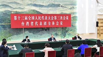 """?汪洋参加台湾代表团审议:坚持""""和平统一、一国两制"""""""