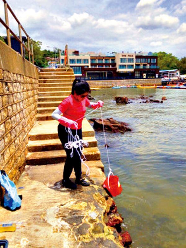 ?港大调查:蚊油危害海洋