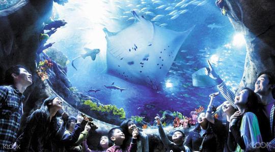 香港立法會財委會續審海洋公園撥款 仍未表決