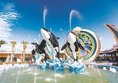 主題公園重開 海昌海洋公園可留意