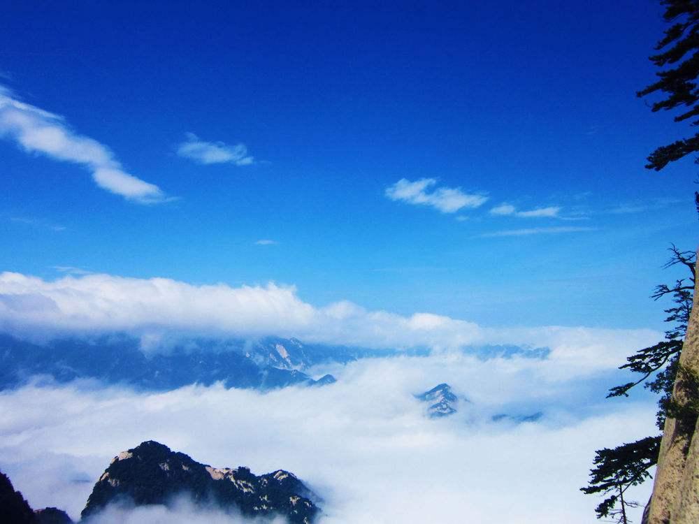 凝思杂记丨心灰只见云,心静预见晴