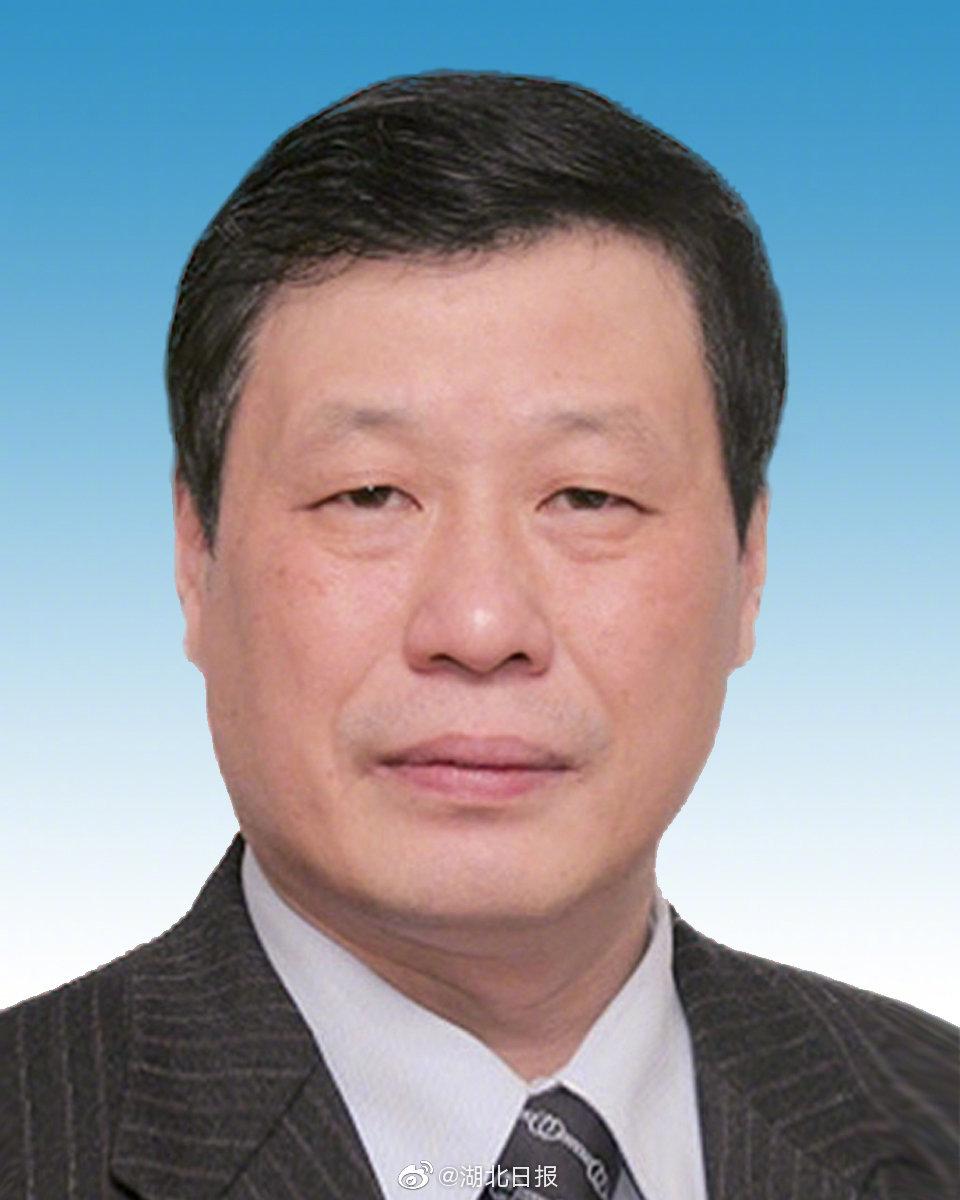 亚州本港台2应勇当选为湖北省十三届人大常委会主任!
