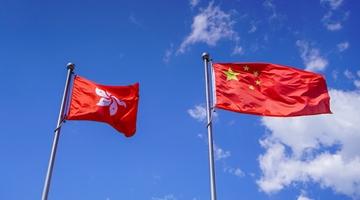 """新社联全力支持实施""""港区国安法""""保护国家和香港"""