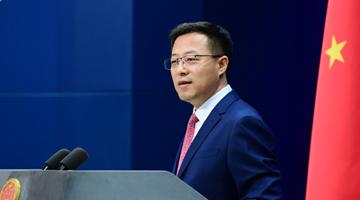 外交部:經雙方協商,中國政府同意世衛組織派專家來華