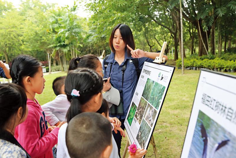 ?粵港澳420萬人次參加自然教育