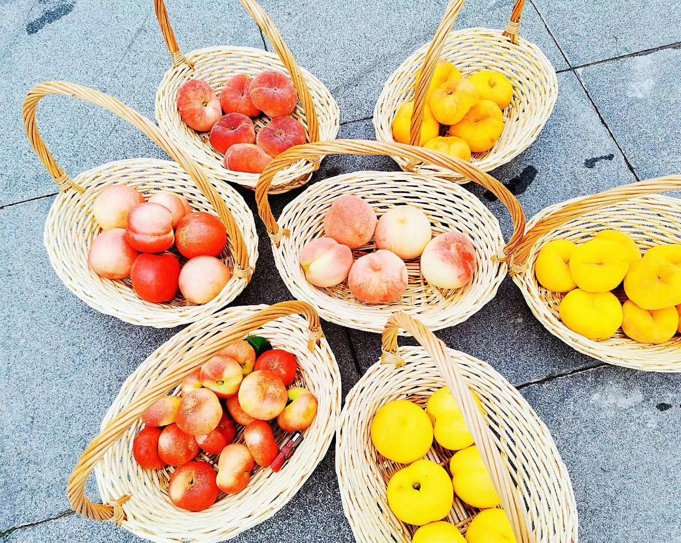 22万亩平谷大桃供应全国市场 黄、白、油、蟠四大类品种采摘期持续至10月