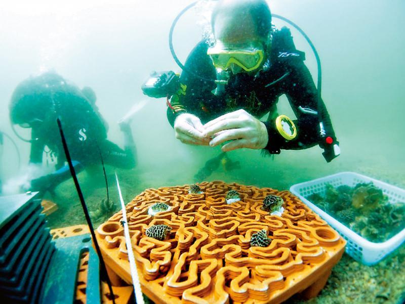 港大研製3D礁盘 保育珊瑚