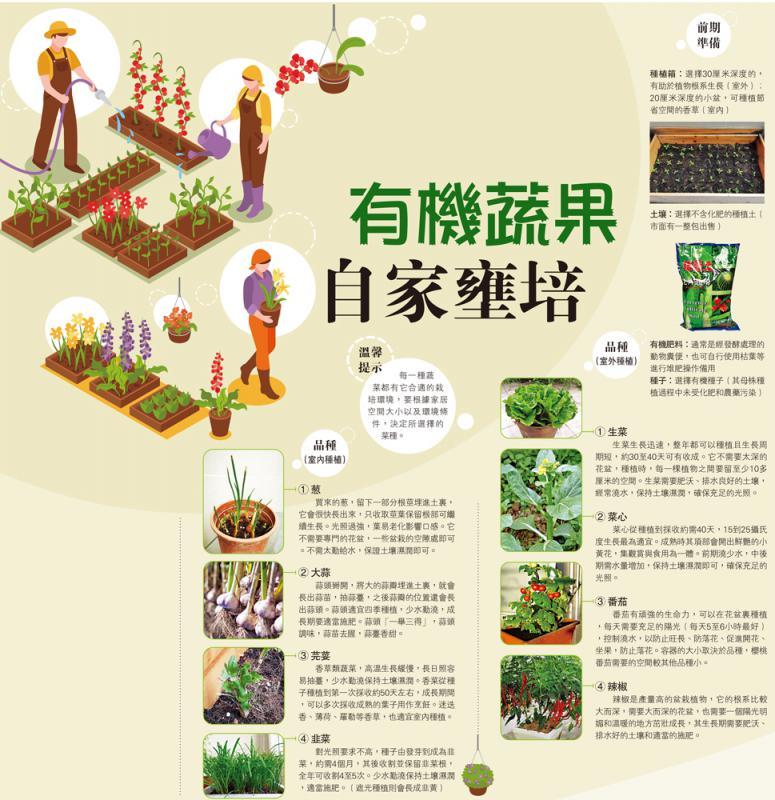 家居种植系列\有机蔬果 自家壅培