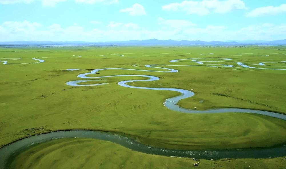 出鲜活好奶粉 君乐宝在坝上草原布局38万亩专属牧草基地