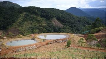 8年花了10多亿,广东大宝山生态修复遇新难题