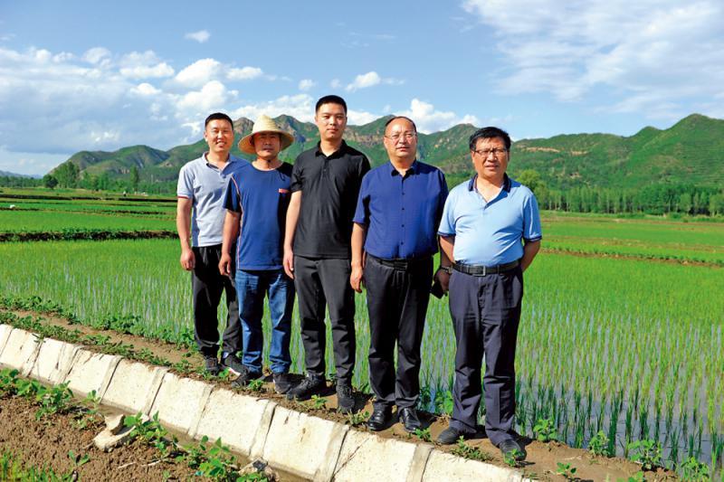 ?試水稻田文化自駕遊