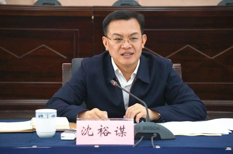 """沈裕谋:助力打造""""连长江接湾区""""的国际投资贸易走廊"""
