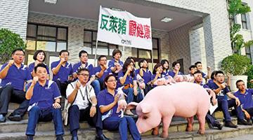 """国民党""""反美猪公投""""通过连署 台近七成人反对进口瘦肉精猪肉"""