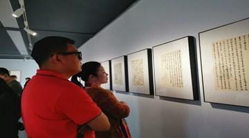 王鲁湘国内首次书写展在京举行