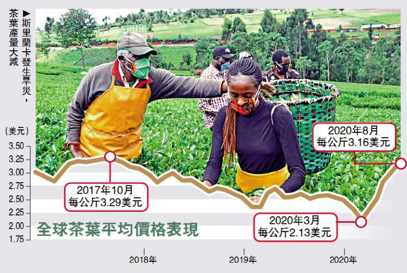 全球经济危与机之茶叶行业/疫情爆发半年 全球茶叶升值五成