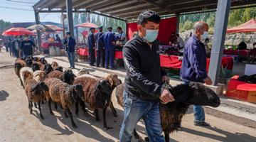 国家卫健委派工作组赴新疆喀什指导疫情防控