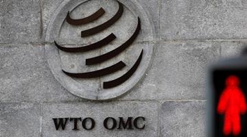 WTO总干事角逐 最终结果或本周揭晓