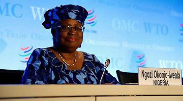 消息人士:欧盟支持尼日利亚候选人参选WTO总干事