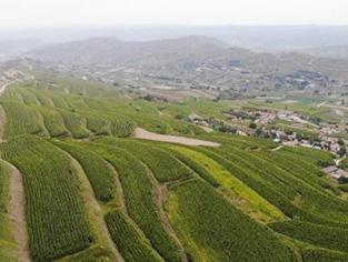 榆中丝路小镇:发展种养游综合农业