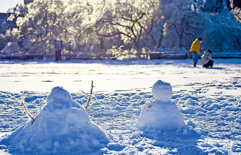 市井万象/小雪至