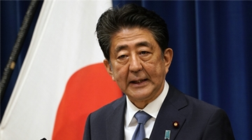 日前首相安倍的秘书被查 涉赏樱会宴会挪用公款