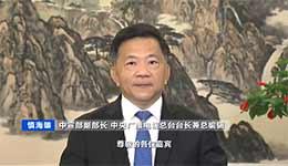 慎海雄:助港繁荣与稳定 总台将加大传播力度
