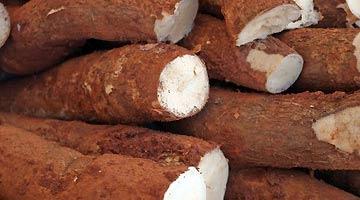 兰州新区商投完成首单5.7万吨木薯淀粉进口业务
