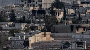 中国代表呼吁推进叙利亚政治进程