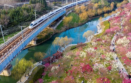合肥蜀山區:春節景點爆棚  接待遊客達50萬人次