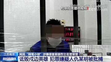 """中纪委网站评""""辣笔小球""""被批捕:以国法护卫英烈之名"""